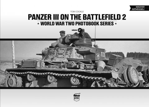 Panzer III on the battlefield 2
